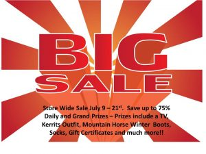 store wide sale